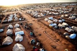 profughi rifugiati