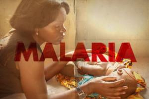 malaria1